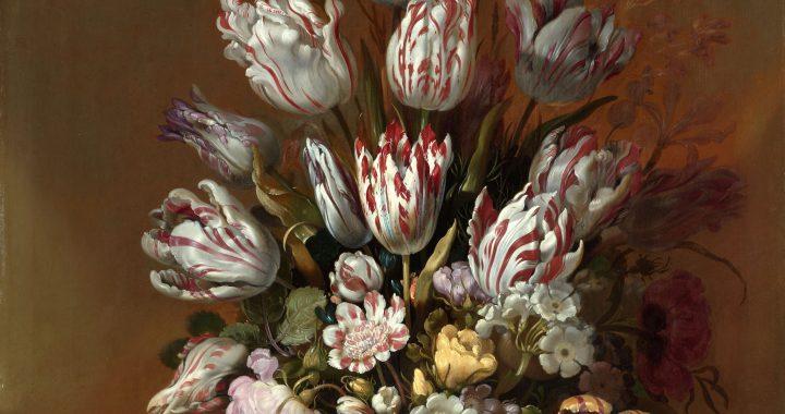 Hollandse tulpengekte